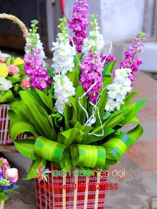 giỏ hoa ngày mới