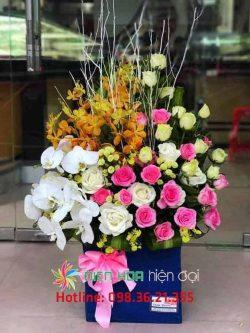 Thêm chút cánh hoa lan tường - DH335